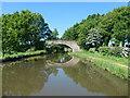 SJ5984 : Thomason's Bridge [No 9], from the east by Christine Johnstone