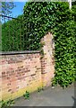 SK6917 : Brick wall on west side of Mill Lane by Phil Richards