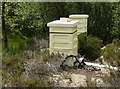 NS2371 : Beehives by Richard Sutcliffe