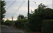 TM0615 : East Road, East Mersea by David Howard