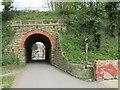 NZ8910 : Arch bridge. Whitby by Malc McDonald