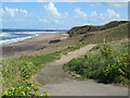 NZ8712 : Path to Upgang Beach, near Sandsend by Malc McDonald