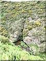 NJ8366 : Gorge of Troup Burn by Oliver Dixon