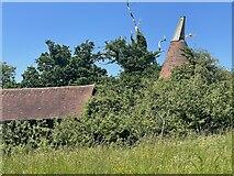TQ6127 : Oast kiln at Rolf's Farm by Oast House Archive