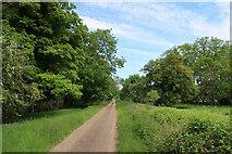 TL6798 : Wretton Fen Drove by Hugh Venables