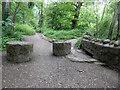 SO7637 : Paths in The Gullet, Malvern Hills by Chris Allen
