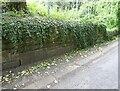 NY9166 : Old Railway Bridge, Homer's Lane by Adrian Taylor