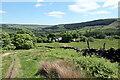 NZ5300 : Bridleway near High Crossletts Farm by Andrew Curtis