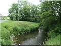SD3676 : River Eea, from Rosthwaite Bridge by Christine Johnstone