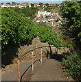 SX9256 : Ranscombe Steps, Brixham by Derek Harper