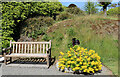 NX0942 : Garden Seat and Colour by Billy McCrorie