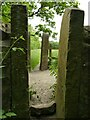 SE1639 : Squeeze stiles at Buck Mill Bridge by Stephen Craven