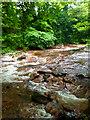NT3367 : River South Esk by Mick Garratt