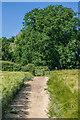 TQ2647 : Footpath by Ian Capper