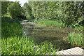 SP4308 : Medieval Fishpond, Eynsham Meadows by Des Blenkinsopp