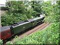NT2470 : 'Flying Scotsman' at Morningside by M J Richardson