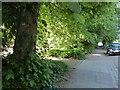 NY2723 : The Cumbria Way, Station Road by Adrian Taylor