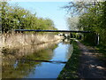 SO8857 : Pipebridge across the Worcester and Birmingham Canal by Mat Fascione