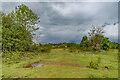 SO3829 : Ewyas Harold Common by Ian Capper