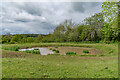 SO3929 : Ewyas Harold Common by Ian Capper
