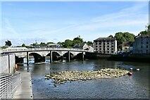 SN1745 : Cardigan Bridge by Michael Garlick