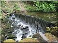 SD9952 : Weir  on  Eller  Beck  Skipton  Woods by Martin Dawes