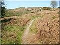 SD2789 : The Cumbria Way near Cockenskell Bridge by Adrian Taylor