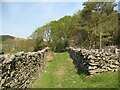 SD2789 : The Cumbria Way near Cockenskell by Adrian Taylor