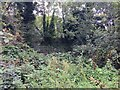 SP2865 : An overgrown corner of Priory Park adjoining Warwick station by Robin Stott