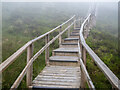 H1128 : The Cuilcagh Boardwalk by Rossographer