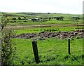 NZ0547 : View south from the Waskerley road by Robert Graham