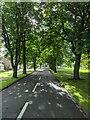 TF0820 : Avenue in the sun by Bob Harvey