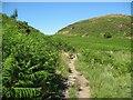 SD2790 : The Cumbria Way near Beacon Tarn by Adrian Taylor