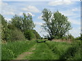 TL5569 : Adventurers' Fen - Harrison's Drove by Colin Smith