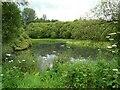 NN7201 : Pond, Doune Ponds by Richard Sutcliffe
