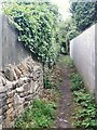 SE2235 : Path up from Springbank Close by Stephen Craven