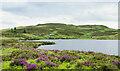 NN9649 : Unnamed lochan near to Creag na Larach by Trevor Littlewood