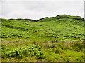 NN9748 : Bracken covered hill slope by Trevor Littlewood