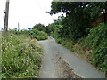 TL8934 : Bombose Lane, Bures by Geographer