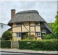 TQ1711 : Saxon Cottage, Steyning by PAUL FARMER