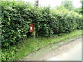 TL8836 : Daws Hall George V Postbox by Geographer