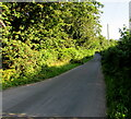 SO3506 : Unclassified road north of Bettws Newydd, Monmouthshire by Jaggery
