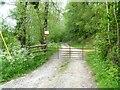 SO3470 : A walk from Hicks Farm to Brampton Bryan [3] by Michael Dibb