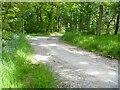 SO3470 : A walk from Hicks Farm to Brampton Bryan [13] by Michael Dibb
