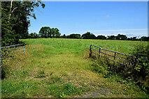 H5070 : An open field, Recarson by Kenneth  Allen