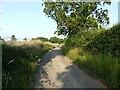TG3530 : Nash's Lane near Nash's Farm by David Pashley