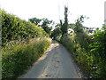 TG3530 : West on Nash's Lane by David Pashley