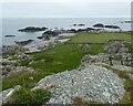 NL9839 : Tiree - Hynish - Coastal area with walled fields  by Rob Farrow