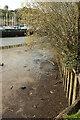 SX8059 : Dart basin by Longmarsh by Derek Harper
