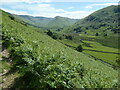 NY4317 : Martindale, from the north-east by Christine Johnstone
